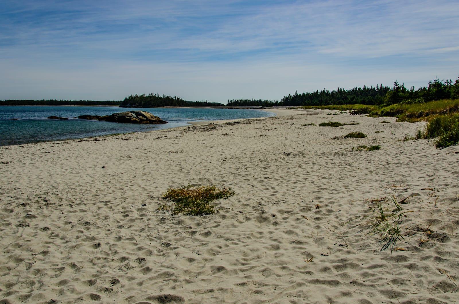 Taylor Head Beach